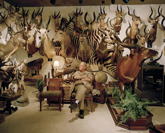 untitled hunter, trophy room # VII, dallas, texas