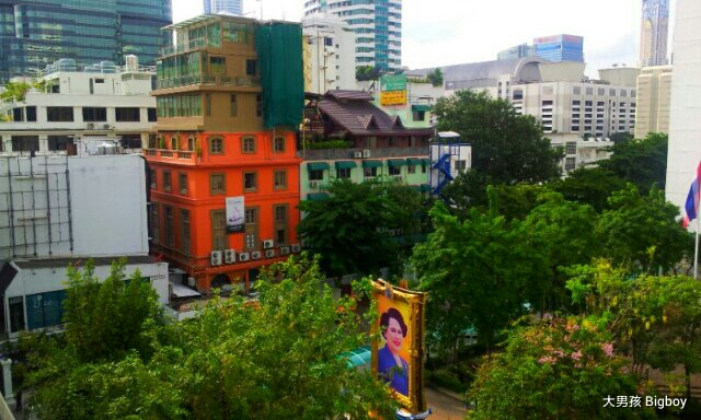 綠油油的曼谷