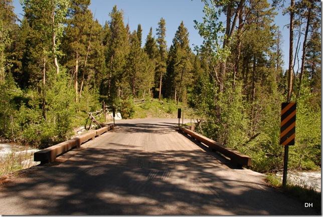 06-08-13 A Moose Wilson Road (137)