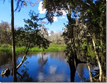 lake_louisa_sp_crooked_river_preserve1