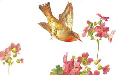 easterbird2