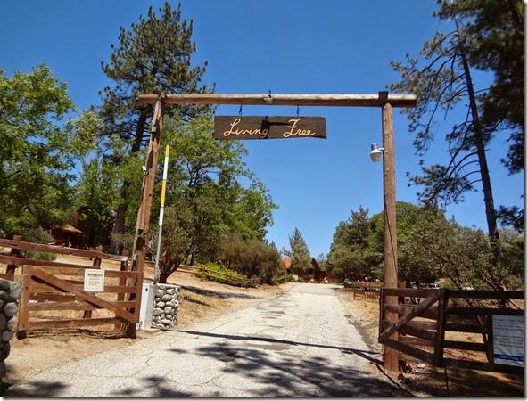Idyllwild Hike 074