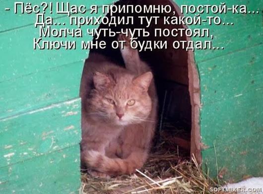 kotomatrix_116