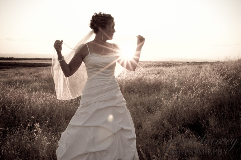 Lauren Trash the dress-8