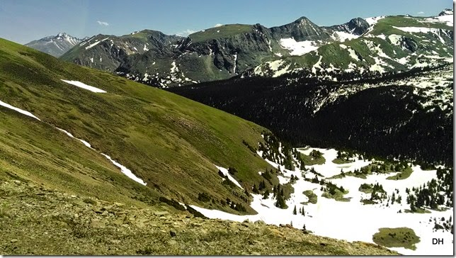 06-19-14 A Trail Ridge Road RMNP (366)