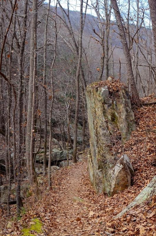 Laurel Snow area visit-17865