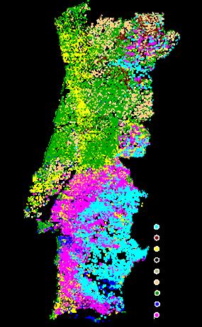 Mapa da Floresta Nacional