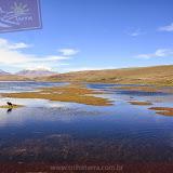 Arica - Parque Nacional Lauca  (30 de 48).jpg