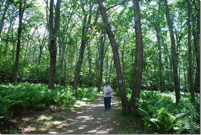 08-24-2011 A Shenandoah NP - Stony Man Hike (2)