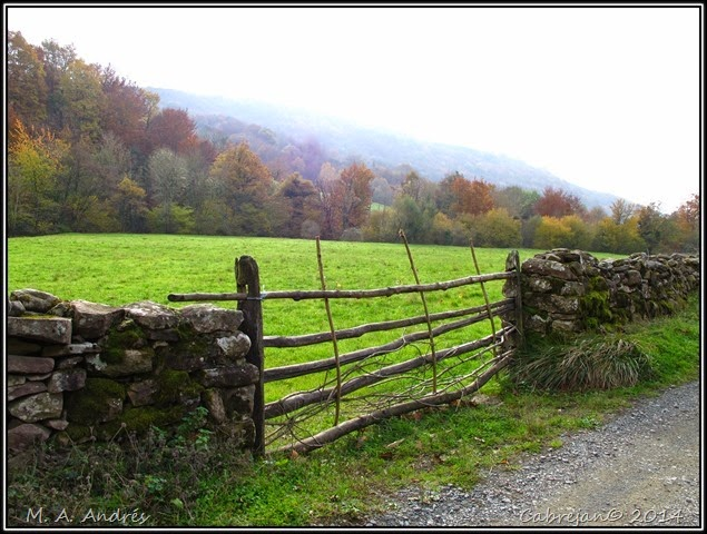 Lantz otoño 019