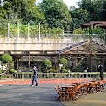 ueno zoo in Ueno, Tokyo, Japan
