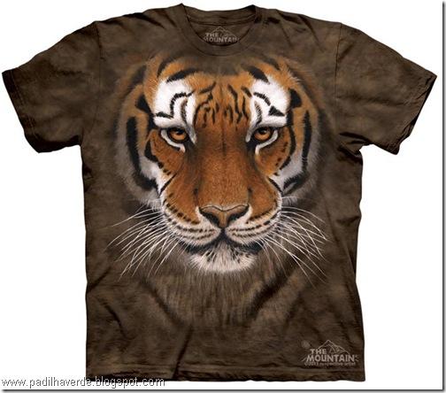 camisetas de Montain-14