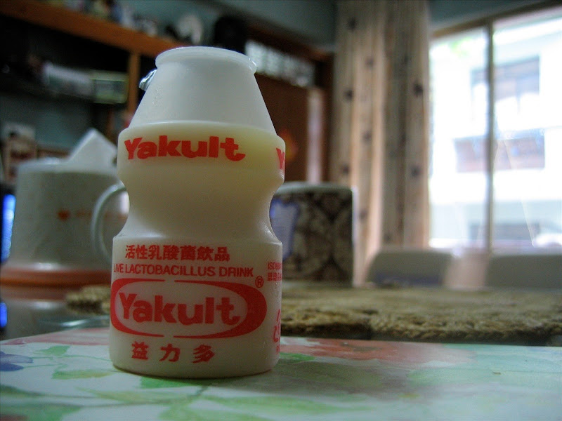Faça 1 litro de Yakult em casa - www.deubandeira.com.br