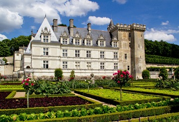 villandry-vegetables_edited-1