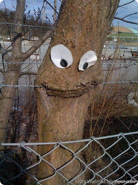 happy_tree