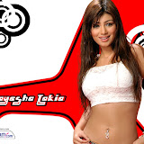 aayesha_takia12_10x7[1].jpg