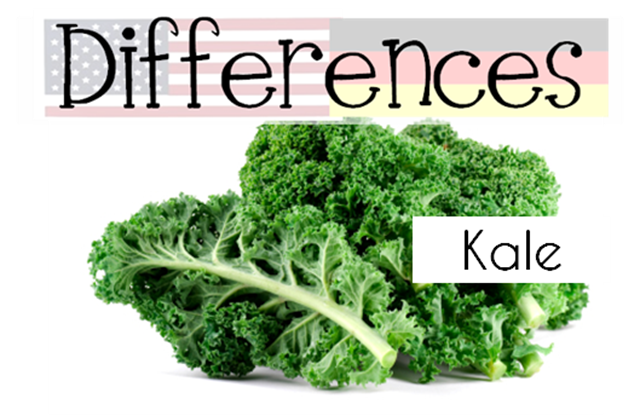 Kale vs grune kohl differences between the US and Germany
