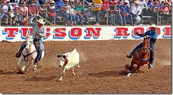 Tucson Rodeo 058 cropped