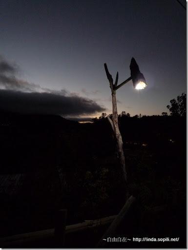 司馬庫斯部落的天然木頭路燈-夜拍