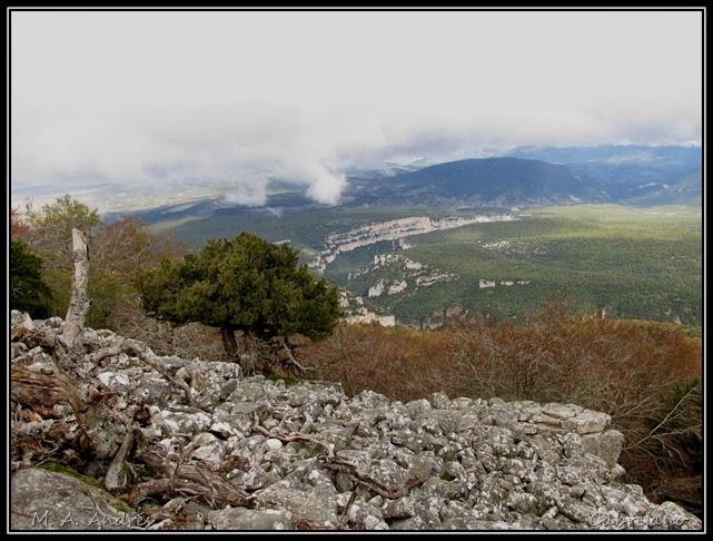 Arangoiti-Castellar 041