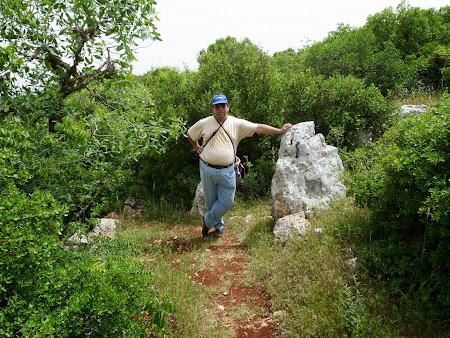 Obiective turistice Iordania: Parcul National Ajloun