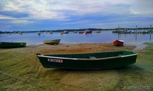 19. boats at Pine Point 8-21-14