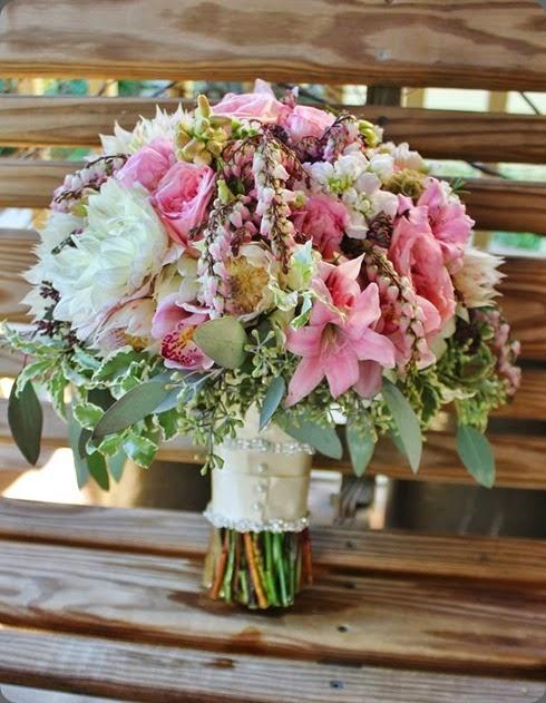 andromeda 12646_10151879012103413_757376182_n la petite fleur