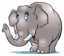 Типы ораторов - слон