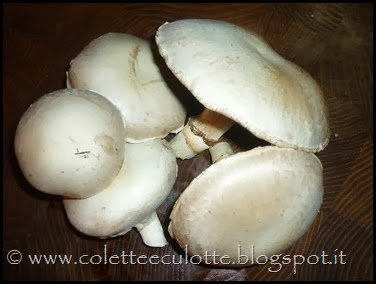I nostri funghi autoprodotti! (13)