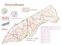 2013.12.01_Лизогубовка_ПК