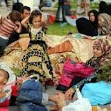 L'Algérie dément avoir refoulé des ressortissants syriens