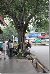 bengali market