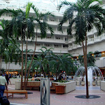 orlando airport in Cape Canaveral, Florida, United States