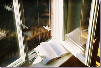 beautiful-bird-book-paper-photography-sunset-Favim.com-85234