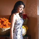 kajal-agarwal-wallpapers-19.jpg