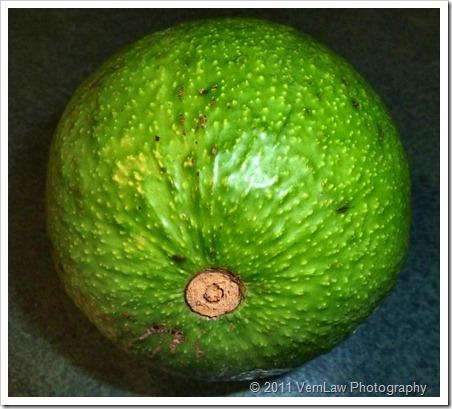 Avocadop1020511