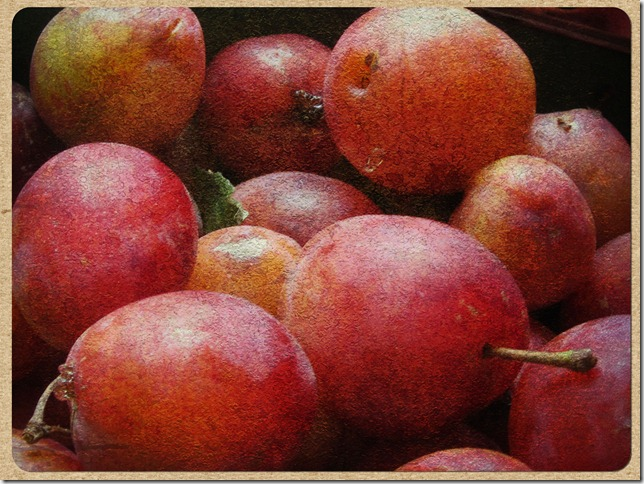 old-master-plums