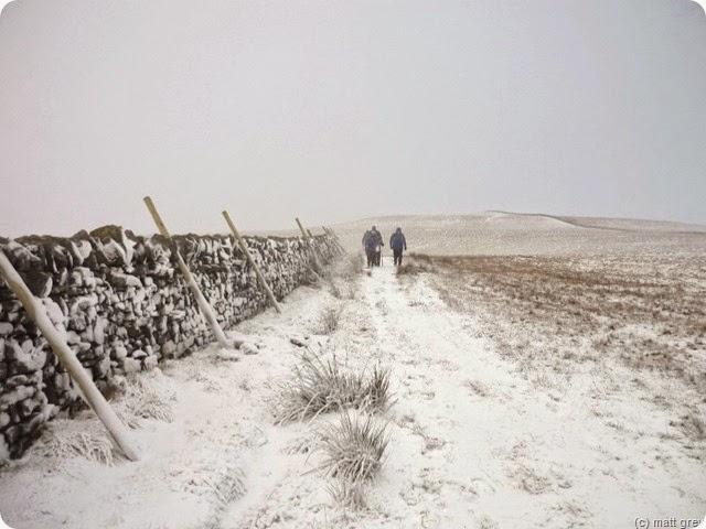 snowing again - sedling rake