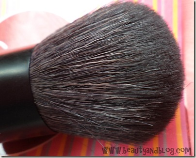 Sigma F45 Buffer Brush Review