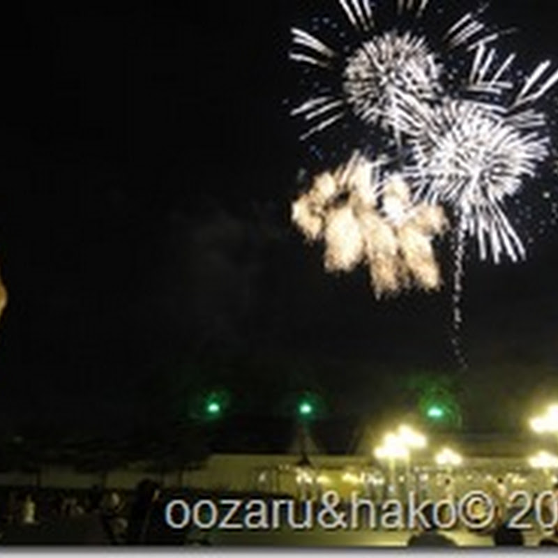 Fuegos Artificiales お花火