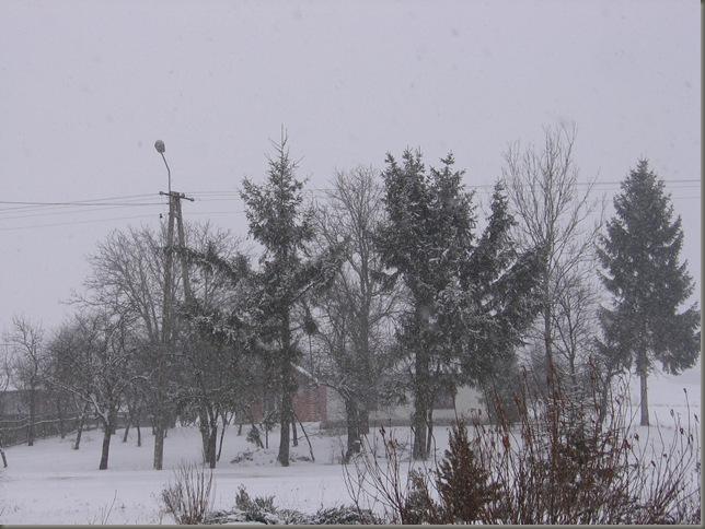 Zima 001