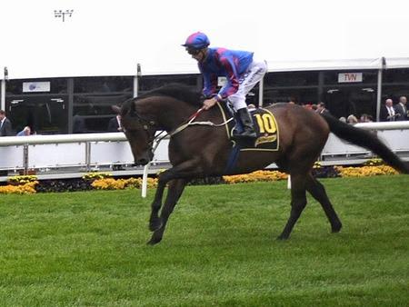 race 8 _toydini