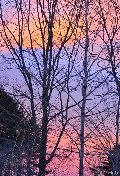 8. dawn today-kab