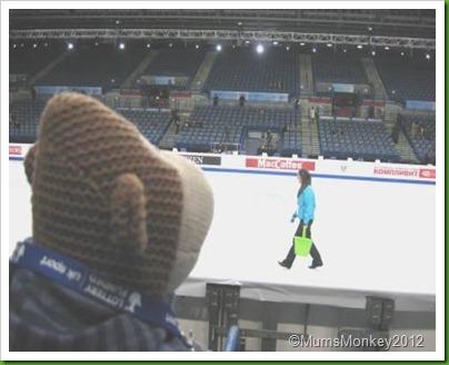 European Figure Skating