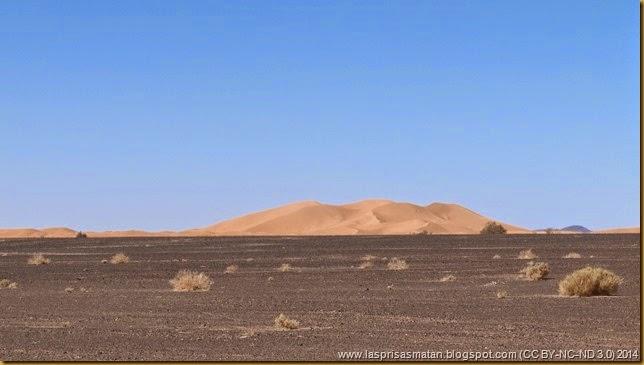 Desierto-413