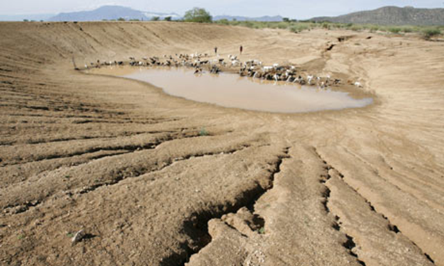 Nomadic pastoralists Turkana tribesmen herd goats and sheep to an almost dry dam on the outskirts of Gakong, in northwestern Kenya. Stephen Morrison / EPA