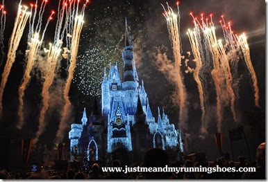 Mickey's Very Merry Christmas Party 2014 (20)