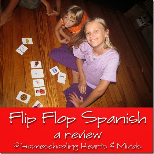 Flip Flop Spanish---for highly visual, experiential learners