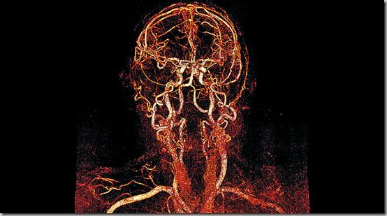Nouvelles visions du corps humain - 4
