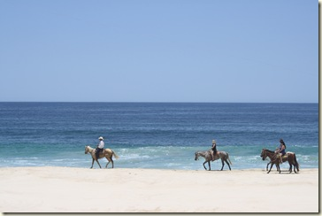 Cabo July 2012 142